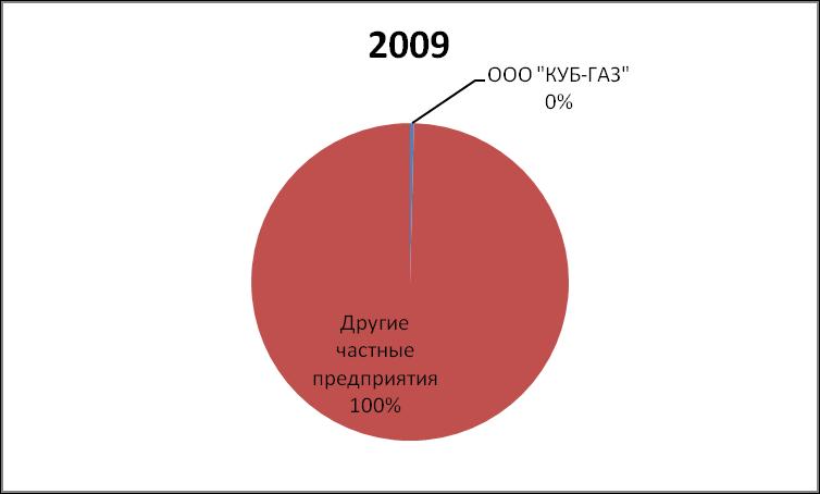 DOLYA RYNKA NEFTI I GAZOVOGO KONDENSATA KUB-GAZ  2009