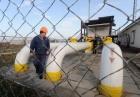 Нафтогаз назначил двух новых членов правления Укргаздобычи